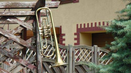 Kostenloses Stock Foto zu clarion, instrument, kornett