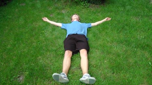 Kostenloses Stock Foto zu auf gras liegen, gras, komisch
