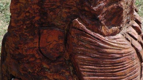 Foto d'estoc gratuïta de ales, art, de fusta, dona
