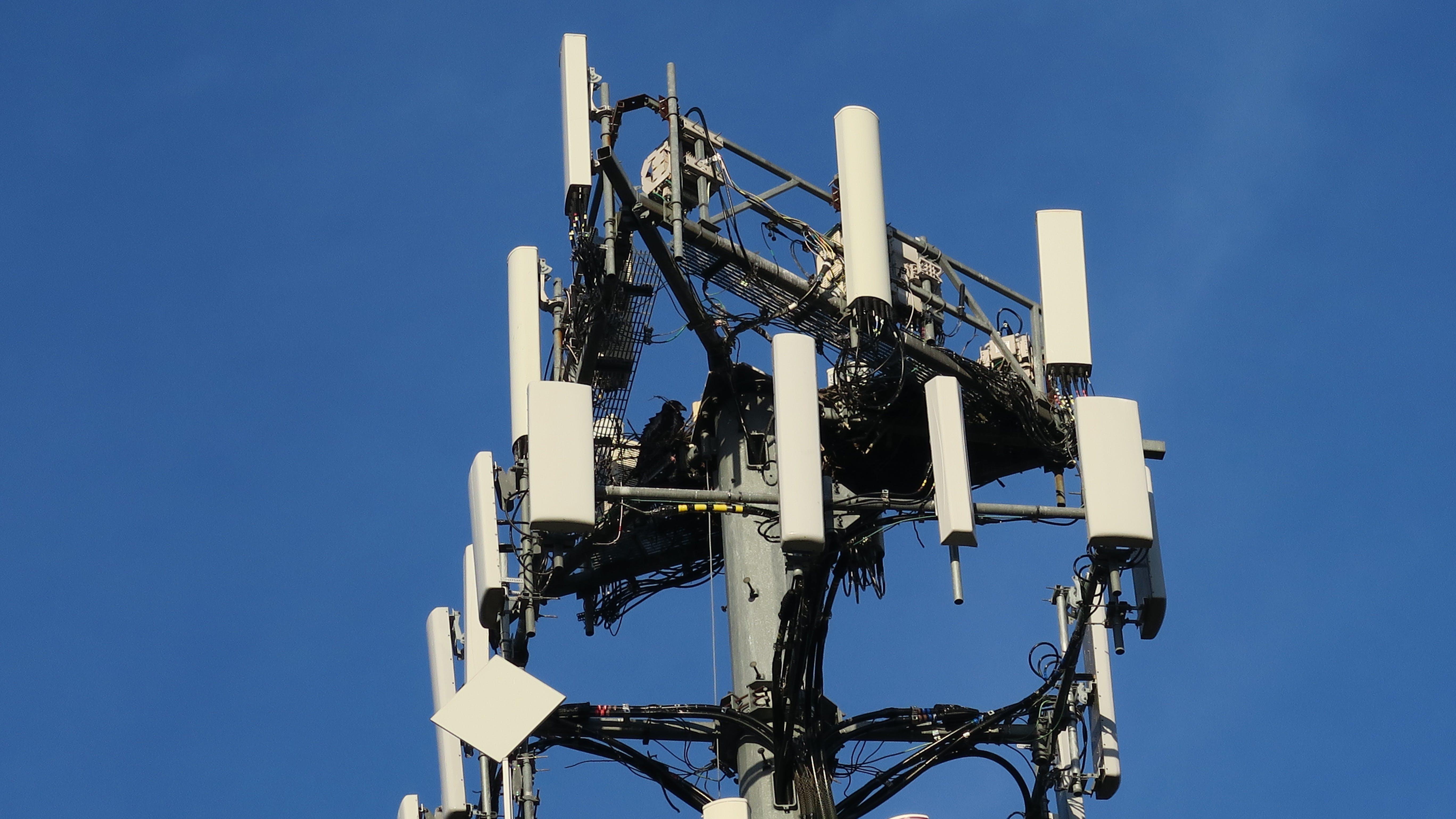 Free stock photo of communications