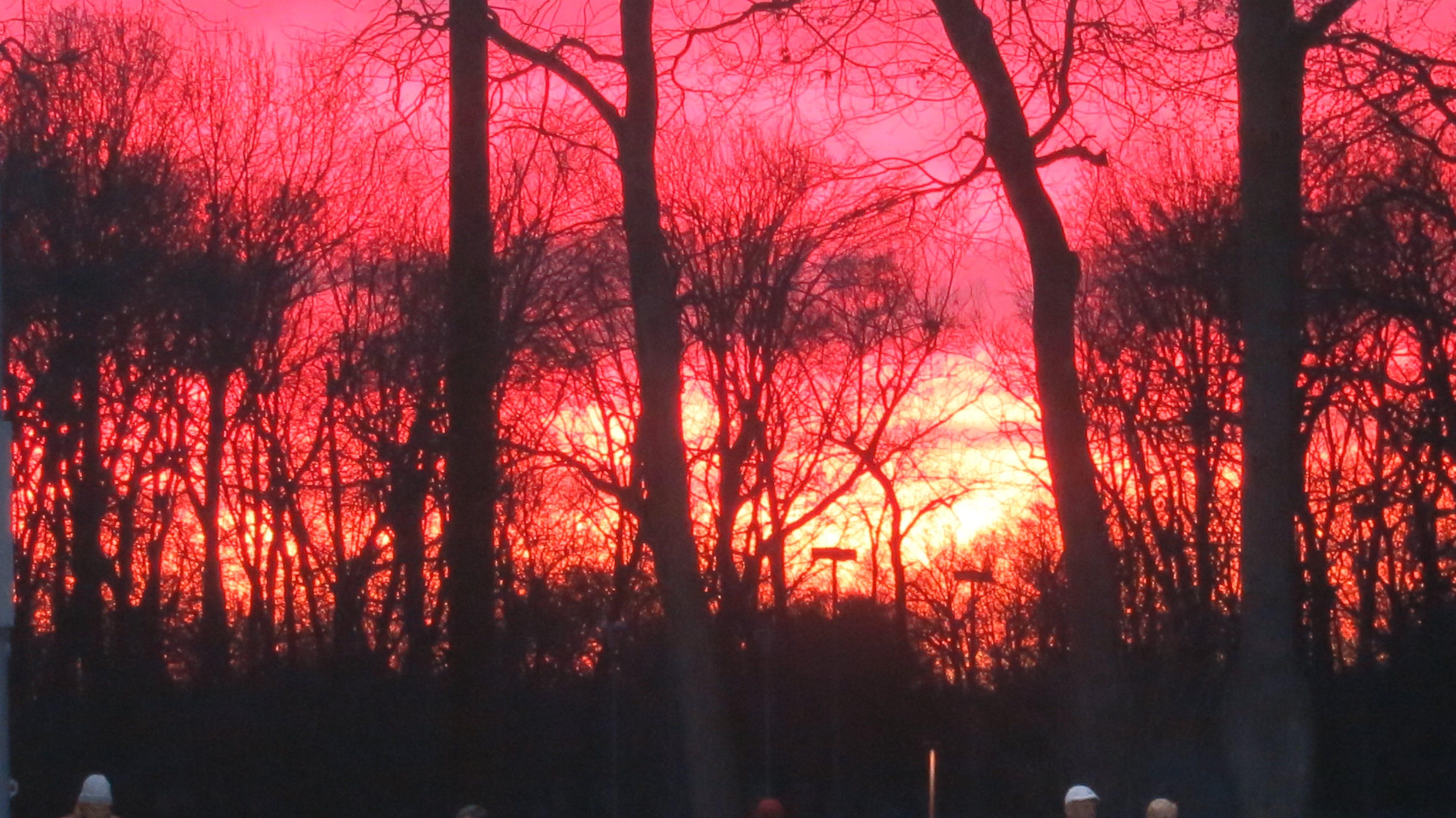Gratis lagerfoto af rød himmel