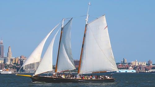 Free stock photo of sailboat