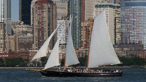 Free stock photo of cityscape, sail boat