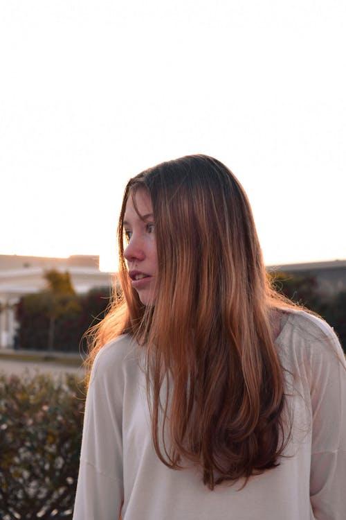 Free stock photo of blonde hair, girl, golden hair, golden hour