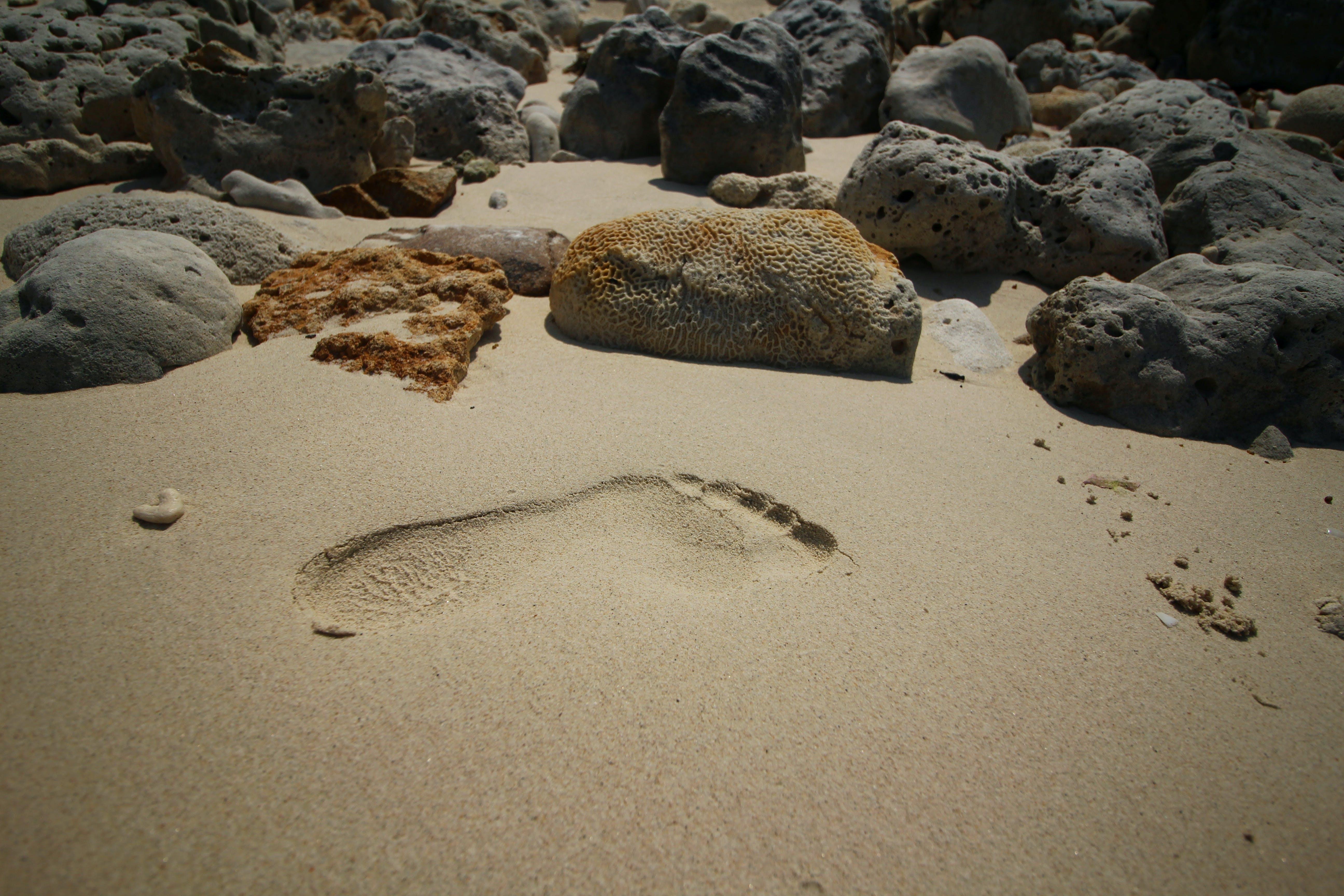 맨발, 모래, 해변의 무료 스톡 사진