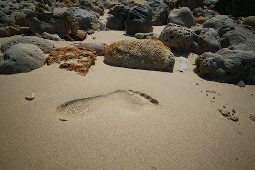 çıplak ayak, kum, plaj içeren Ücretsiz stok fotoğraf