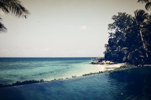 otel, plaj, takılmak, Yüzme havuzu içeren Ücretsiz stok fotoğraf