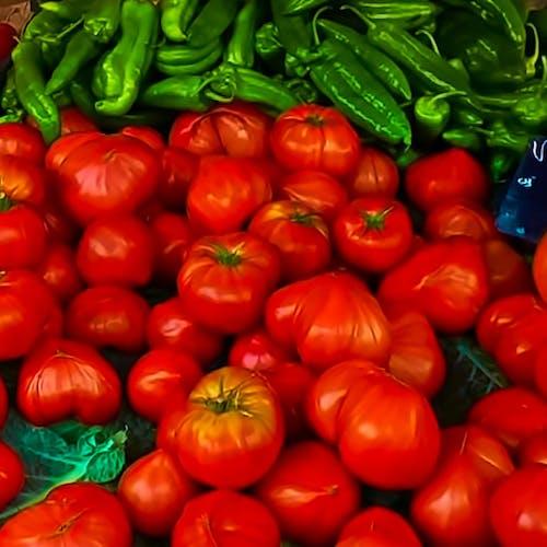 市場, 農民市場の無料の写真素材