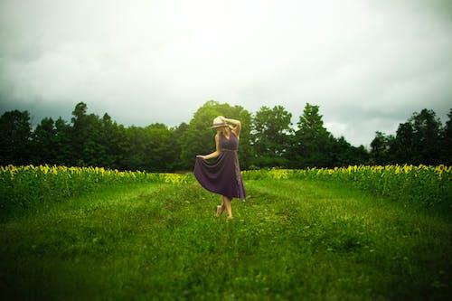 Imagine de stoc gratuită din câmp, dans, femeie, fermă