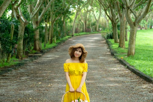 Foto d'estoc gratuïta de arbres, asiàtica, bonic, bufó