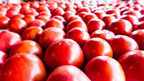 Free stock photo of red, tomato