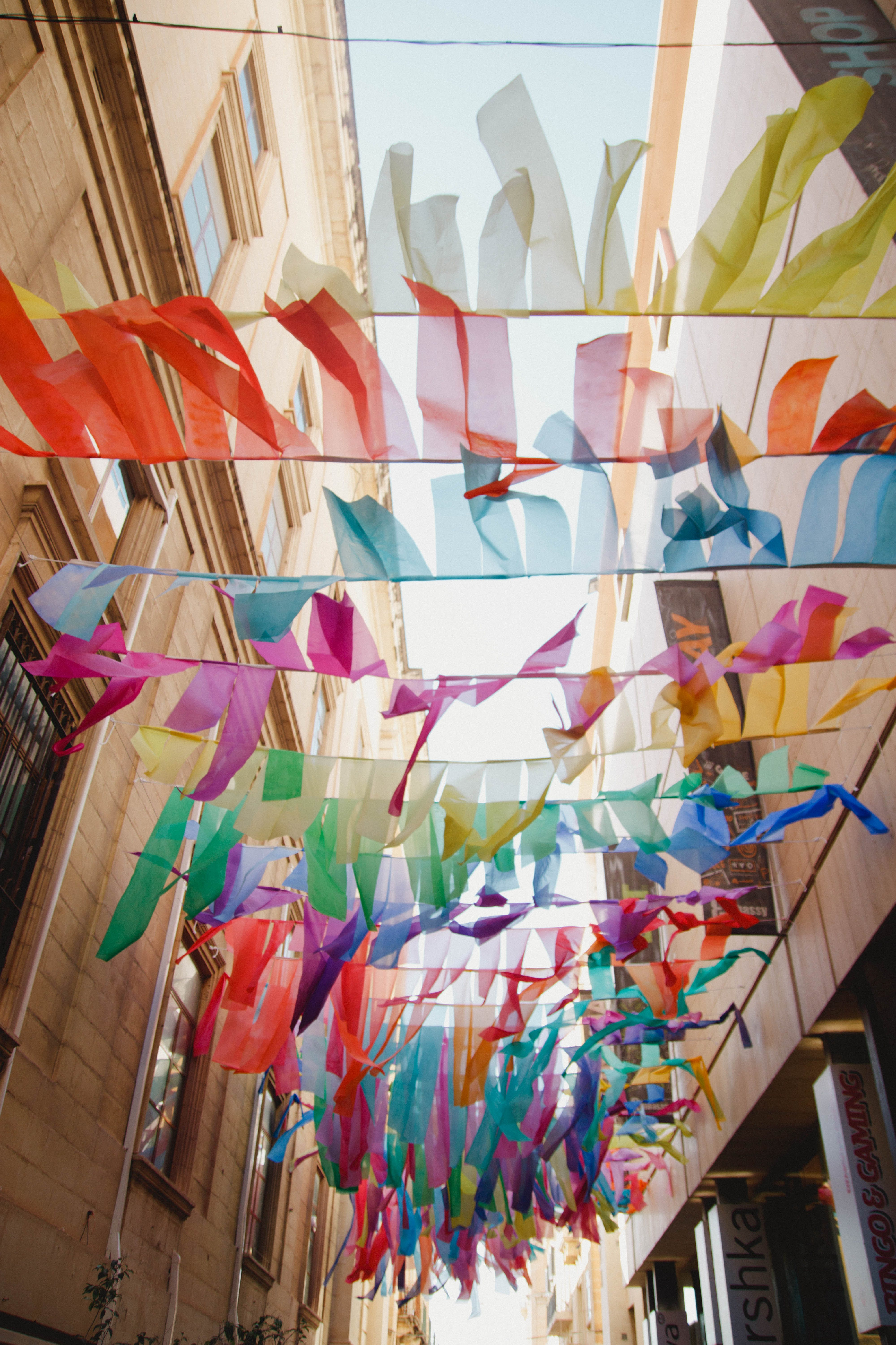Buntings Above Pathway