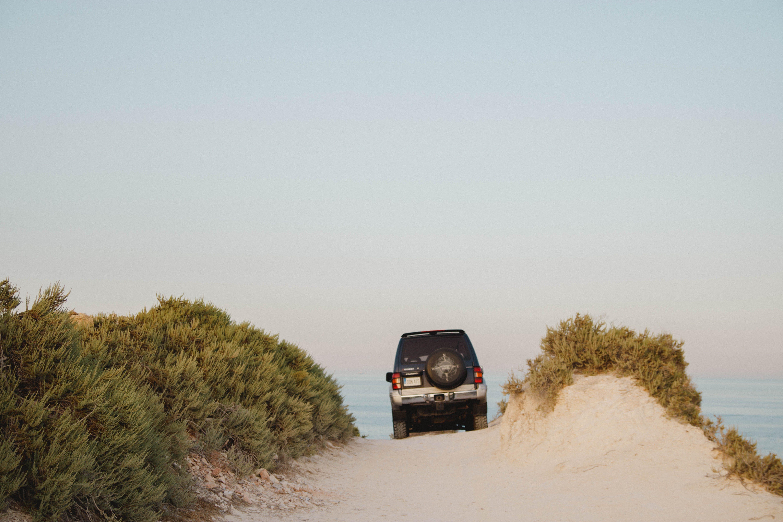 Black Car Traveling on Sand Ground Beside Green Plants
