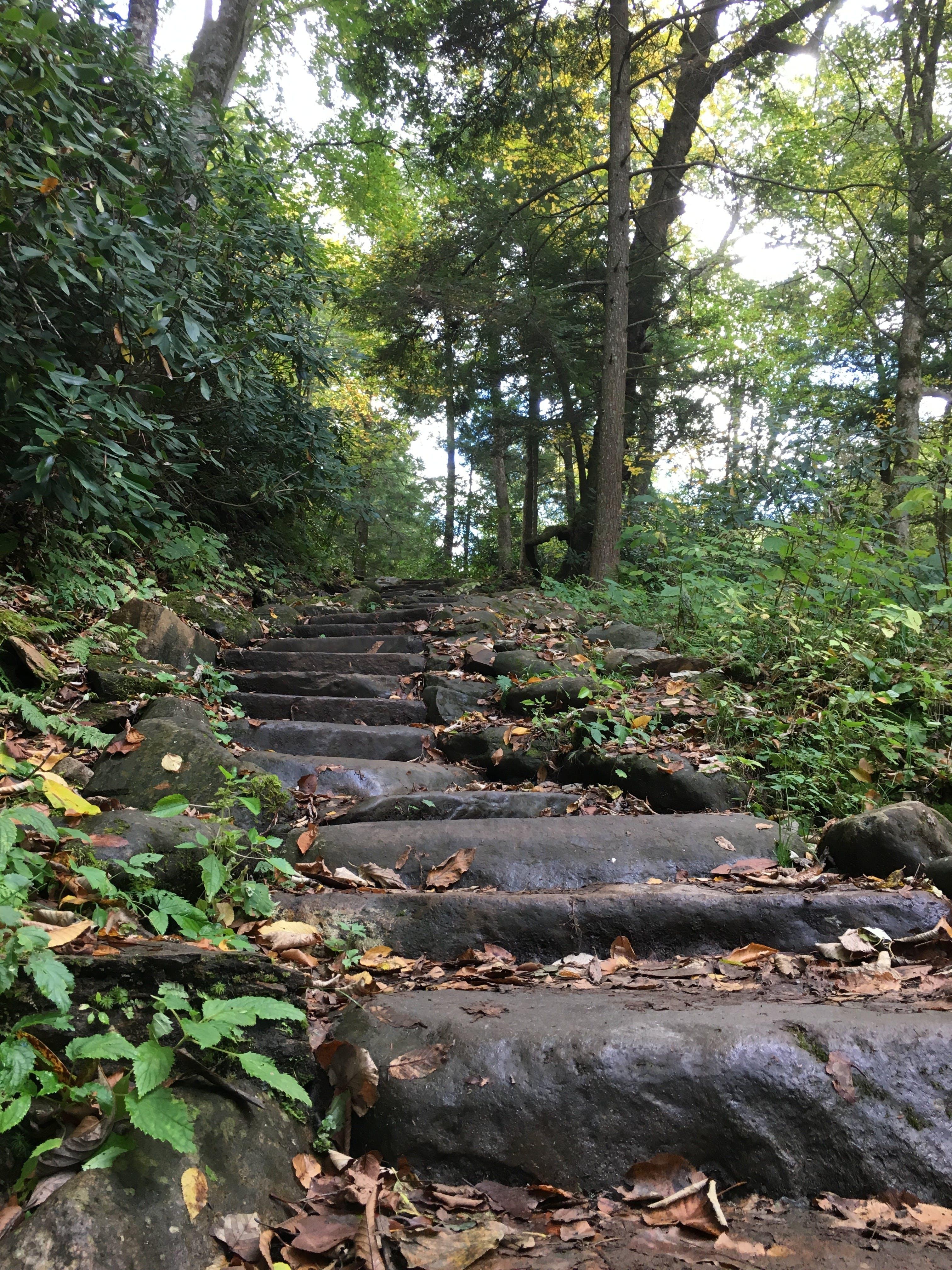 Free stock photo of stone stairs