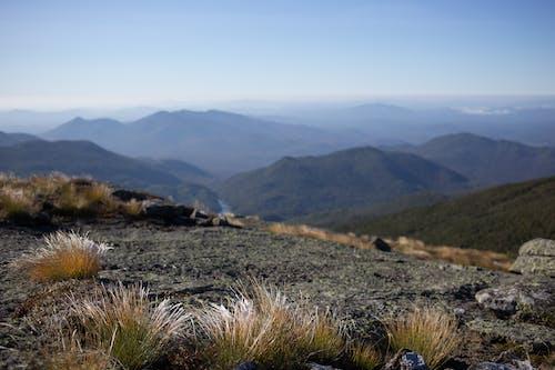 Free stock photo of Adirondacks, adk, alpine, blue skies