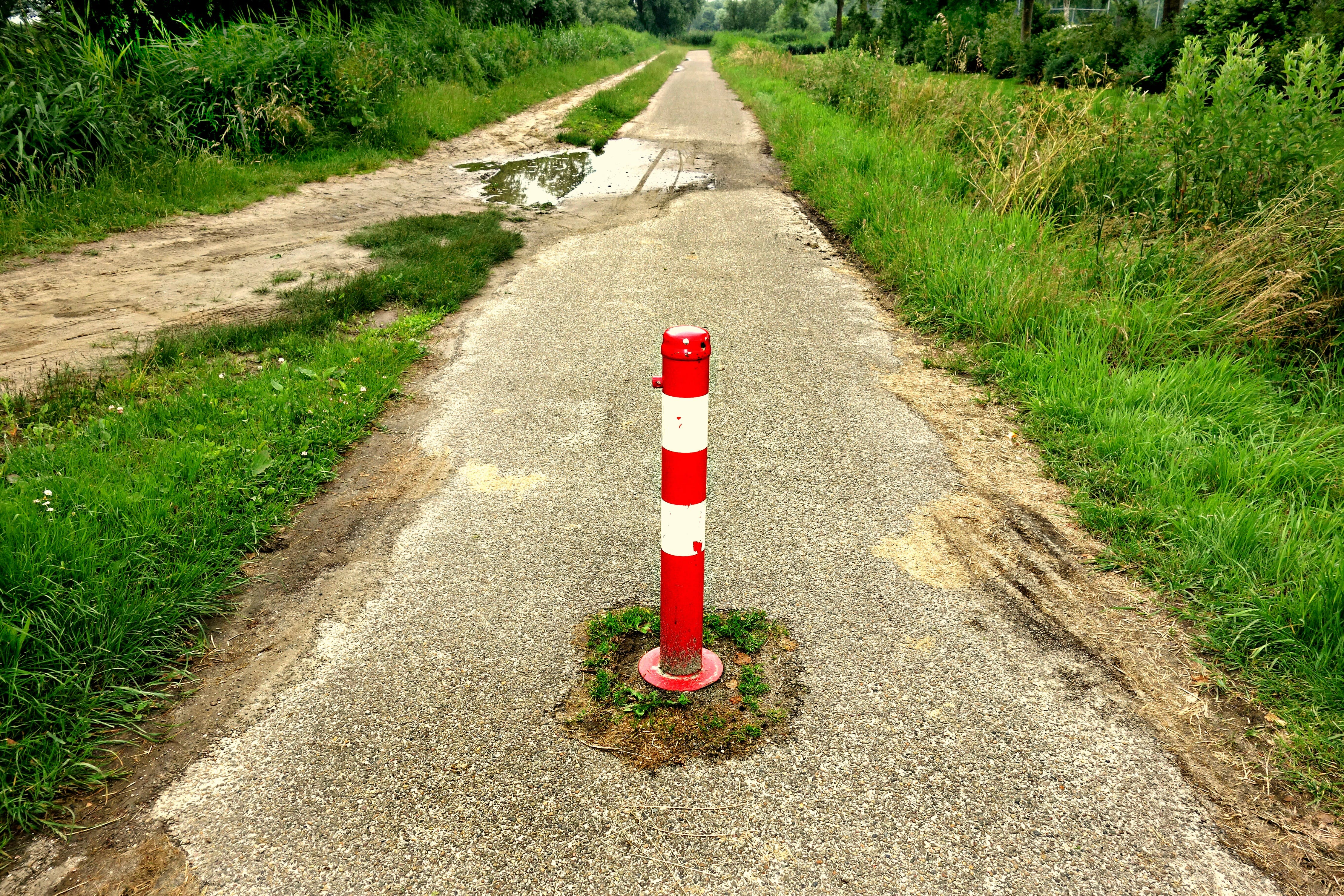 Free stock photo of traffic, red, path, white