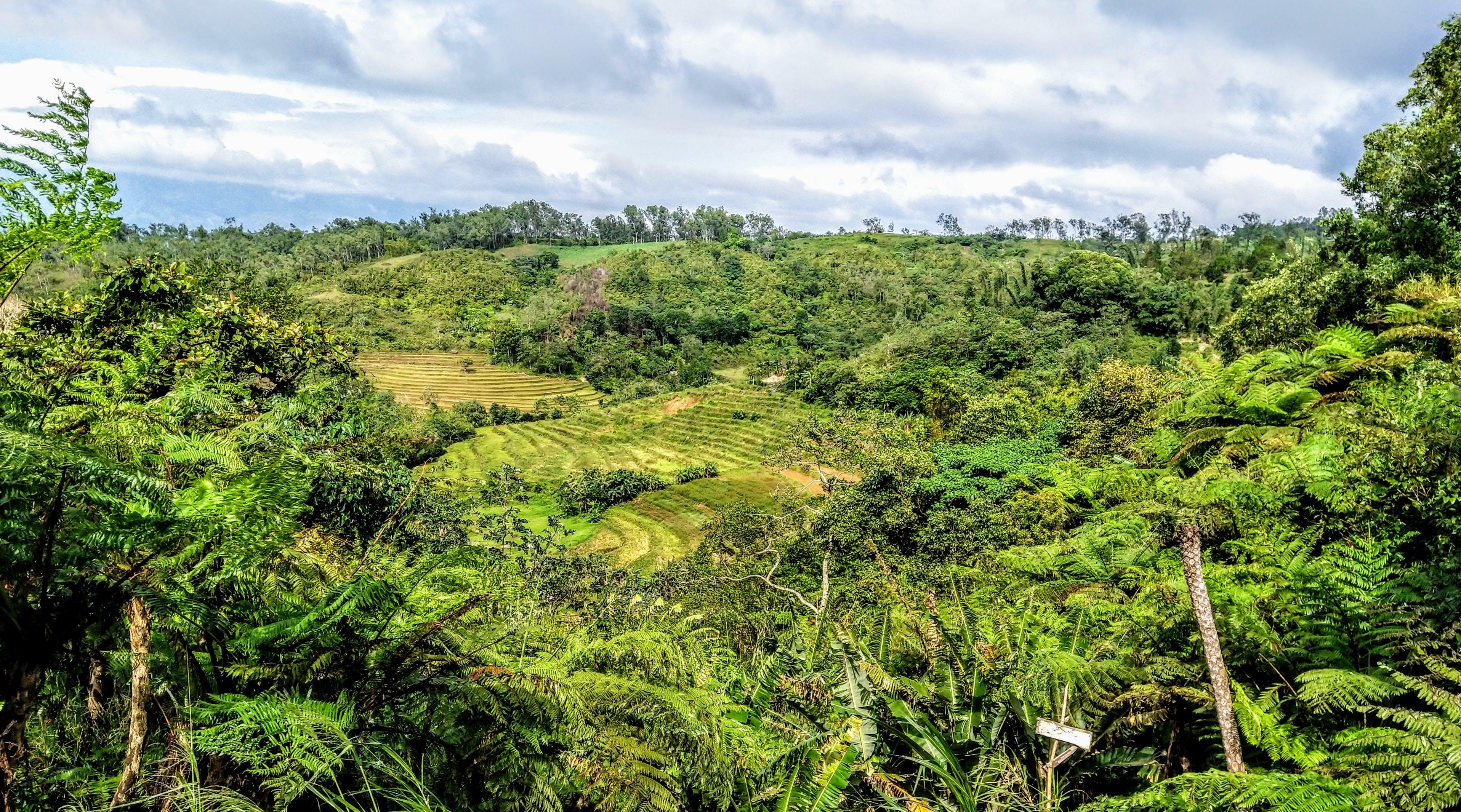 Free stock photo of landscape, farm, fields, scenery