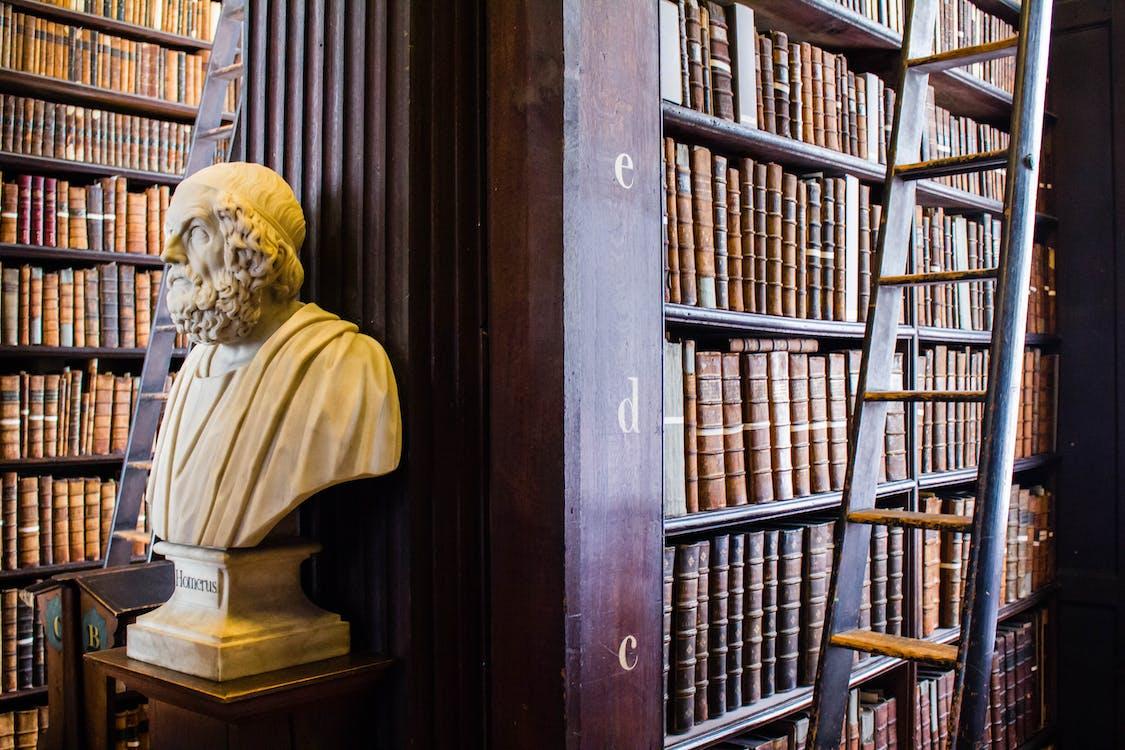 Ilmainen kuvapankkikuva tunnisteilla Kirjasto, kirjat, tutkija