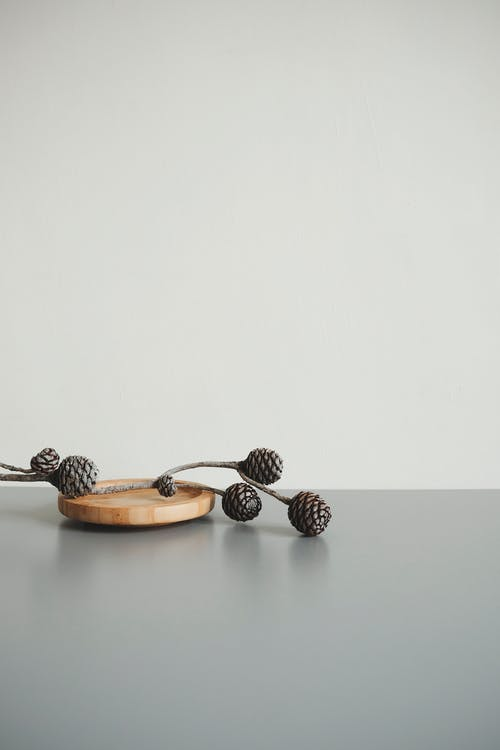 Brown Pine Cone on Gray Surface