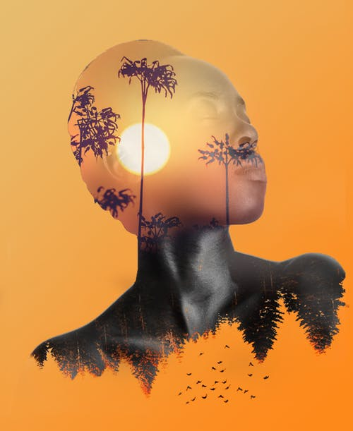 Free stock photo of black, double exposure, orange skies, sunset