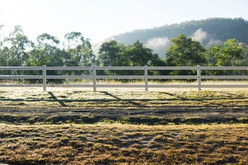 Fotobanka sbezplatnými fotkami na tému dedinský, denné svetlo, exteriéry, farma