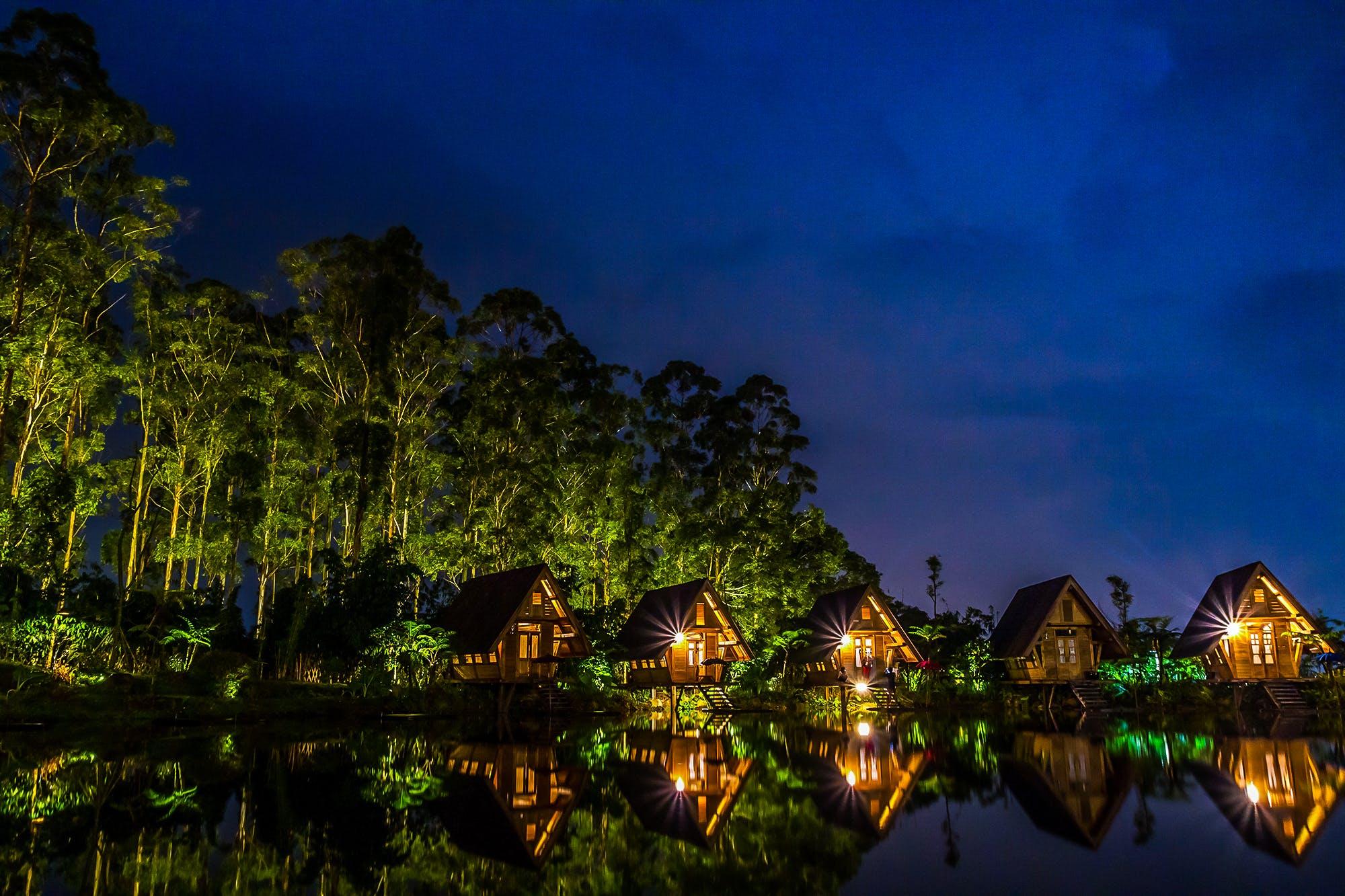 Kostenloses Stock Foto zu bäume, beleuchtung, dunkel, fluss