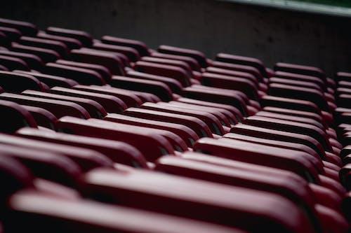 Бесплатное стоковое фото с грести, сиденья, спортивное поле, стадион