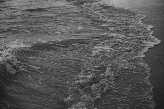 Free stock photo of sea, black-and-white, nature, beach
