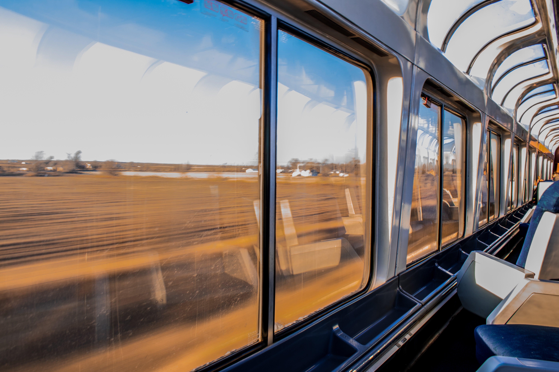 Person in Passenger Train