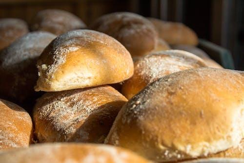 Free stock photo of bakery, bread, delicious, dough