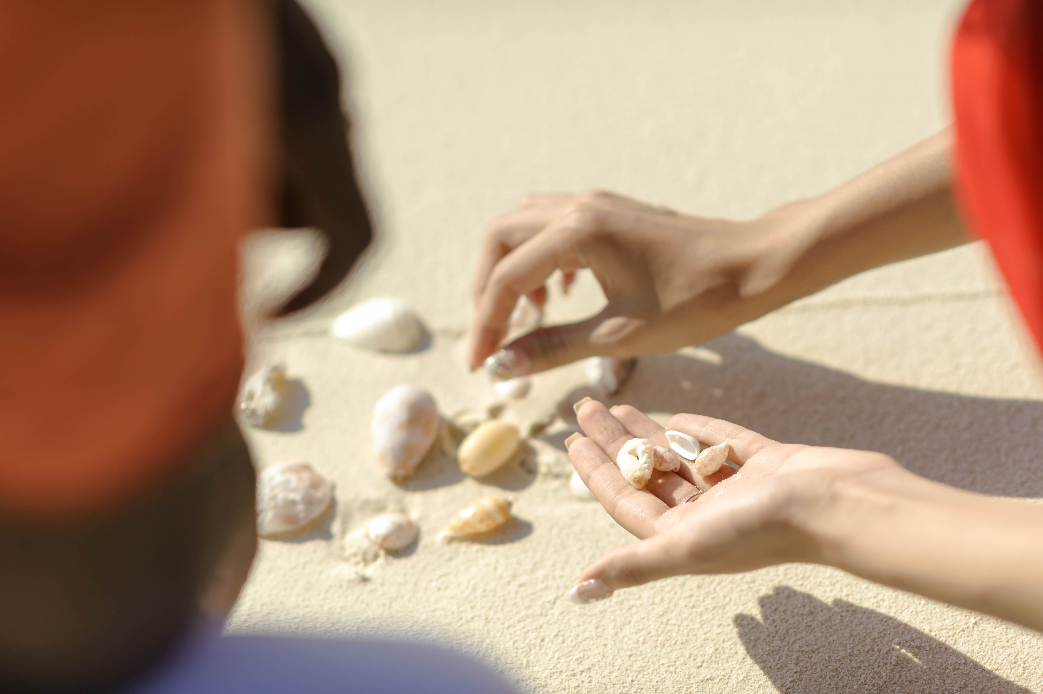 Person Picking Shells