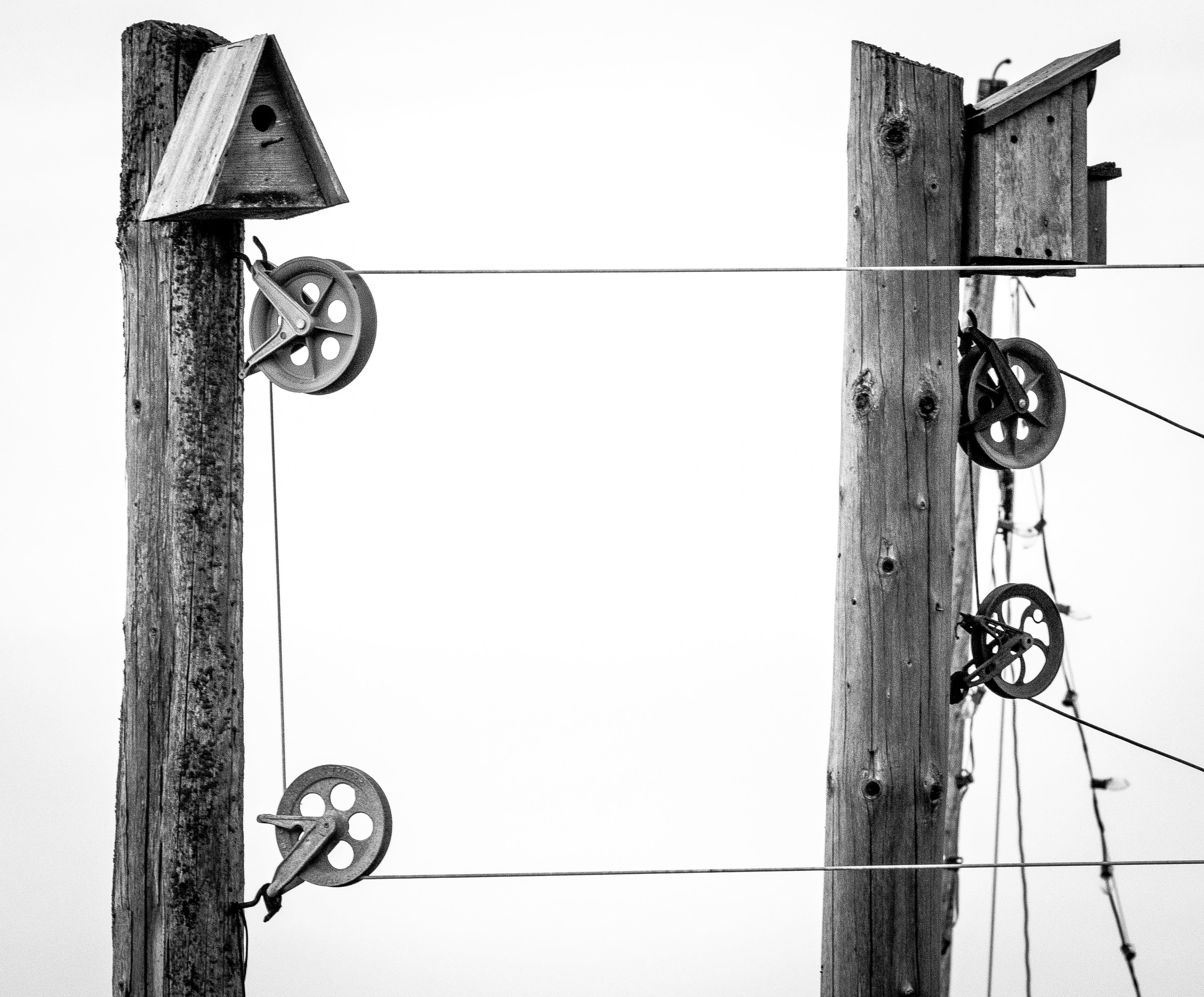 Free stock photo of b&w, birdhouse, clothesline