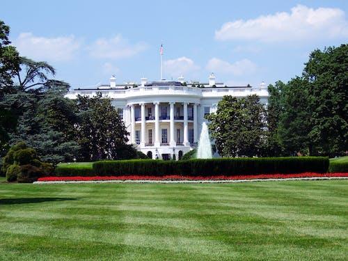 Gratis stockfoto met administratie, Amerika, architectuur, bomen