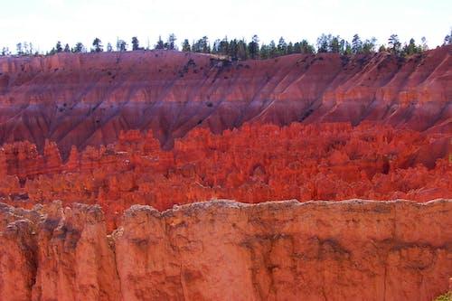 Kostenloses Stock Foto zu bryce, canyon, hoodoos