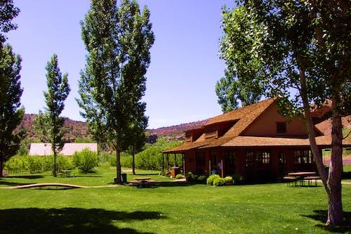Kostenloses Stock Foto zu bauernhof, bäume, farm