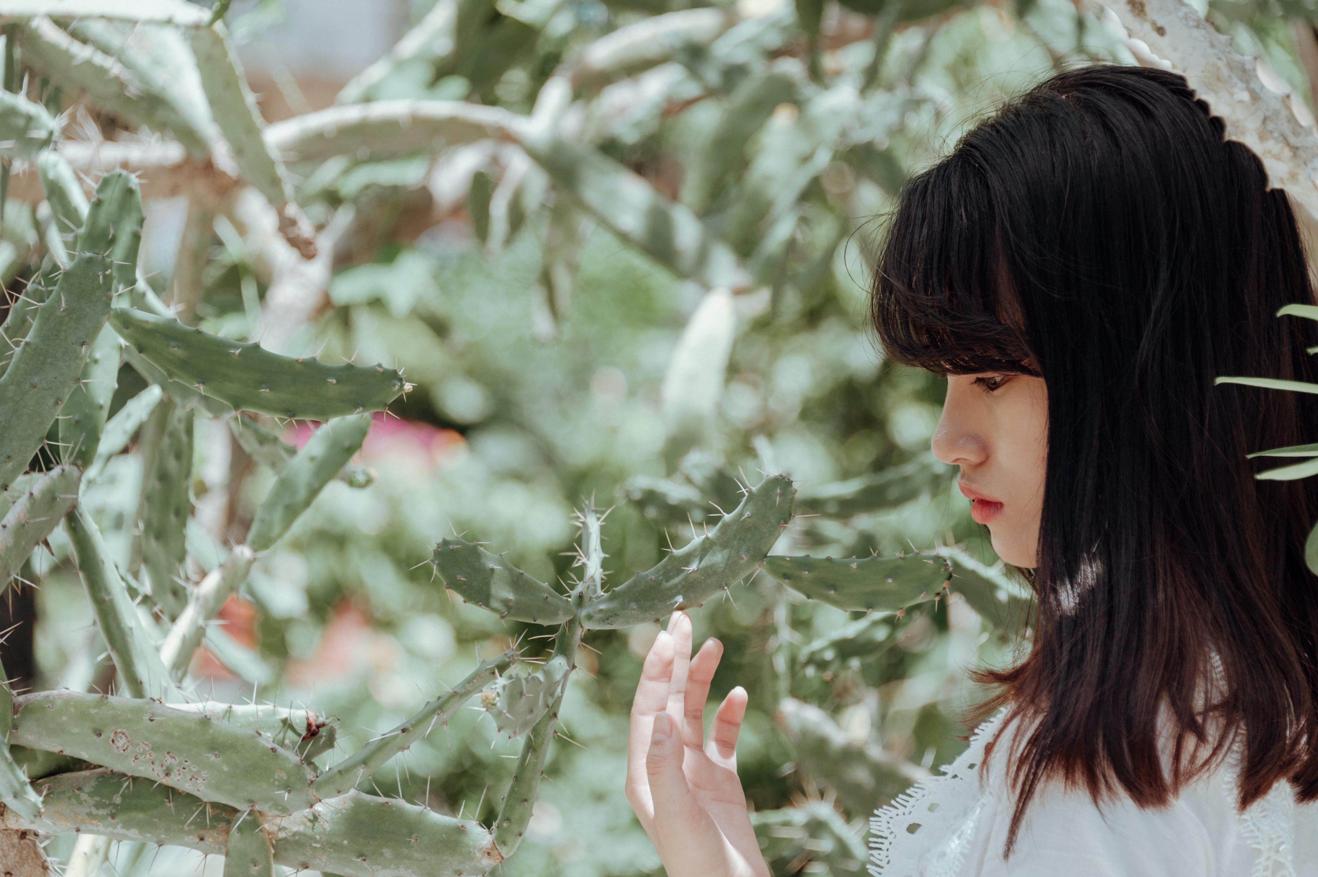 Woman Taking Photo Beside Cactus Plant