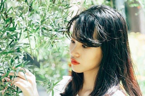 Безкоштовне стокове фото на тему «азіатська дівчина, азіатська жінка, вродлива»
