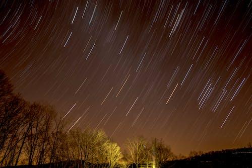 Δωρεάν στοκ φωτογραφιών με echo bluff state park, αστέρια μονοπάτια, αστροφωτογραφία, δέντρα