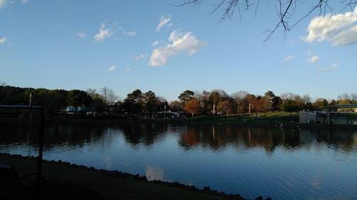 Бесплатное стоковое фото с озера