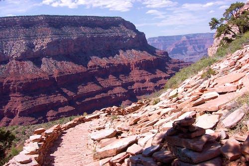 Gratis arkivbilde med canyon, fottur, grand canyon, løype