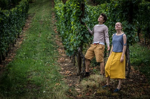 Free stock photo of alsace, couple, ribeauville, vineyard