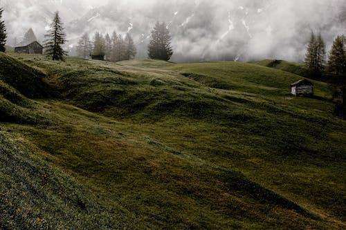 冒險, 天性, 天氣, 山 的 免费素材照片