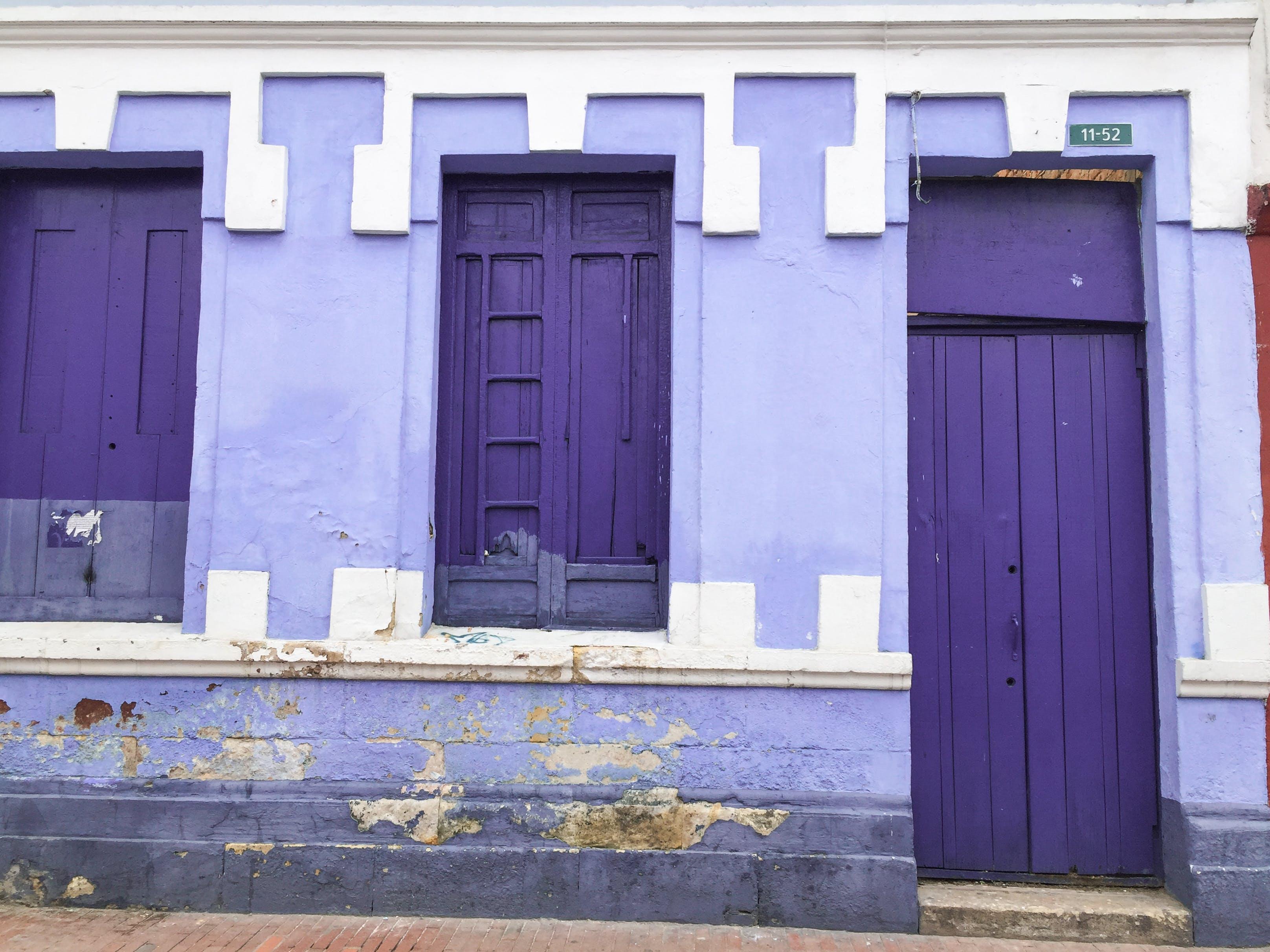 Free stock photo of purple, windows, color, colors