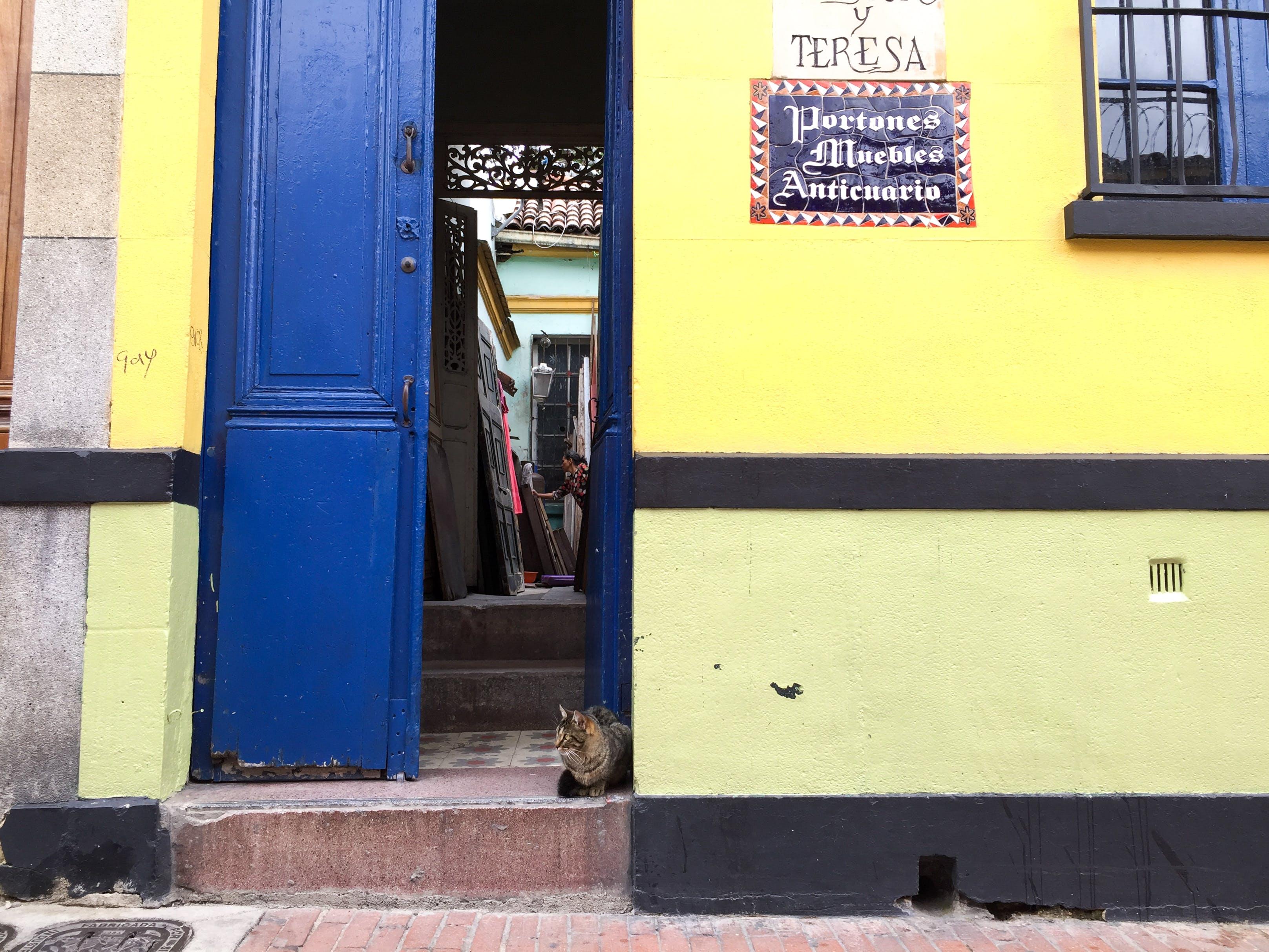 Gratis lagerfoto af bogota, candelaria, centro, colombia