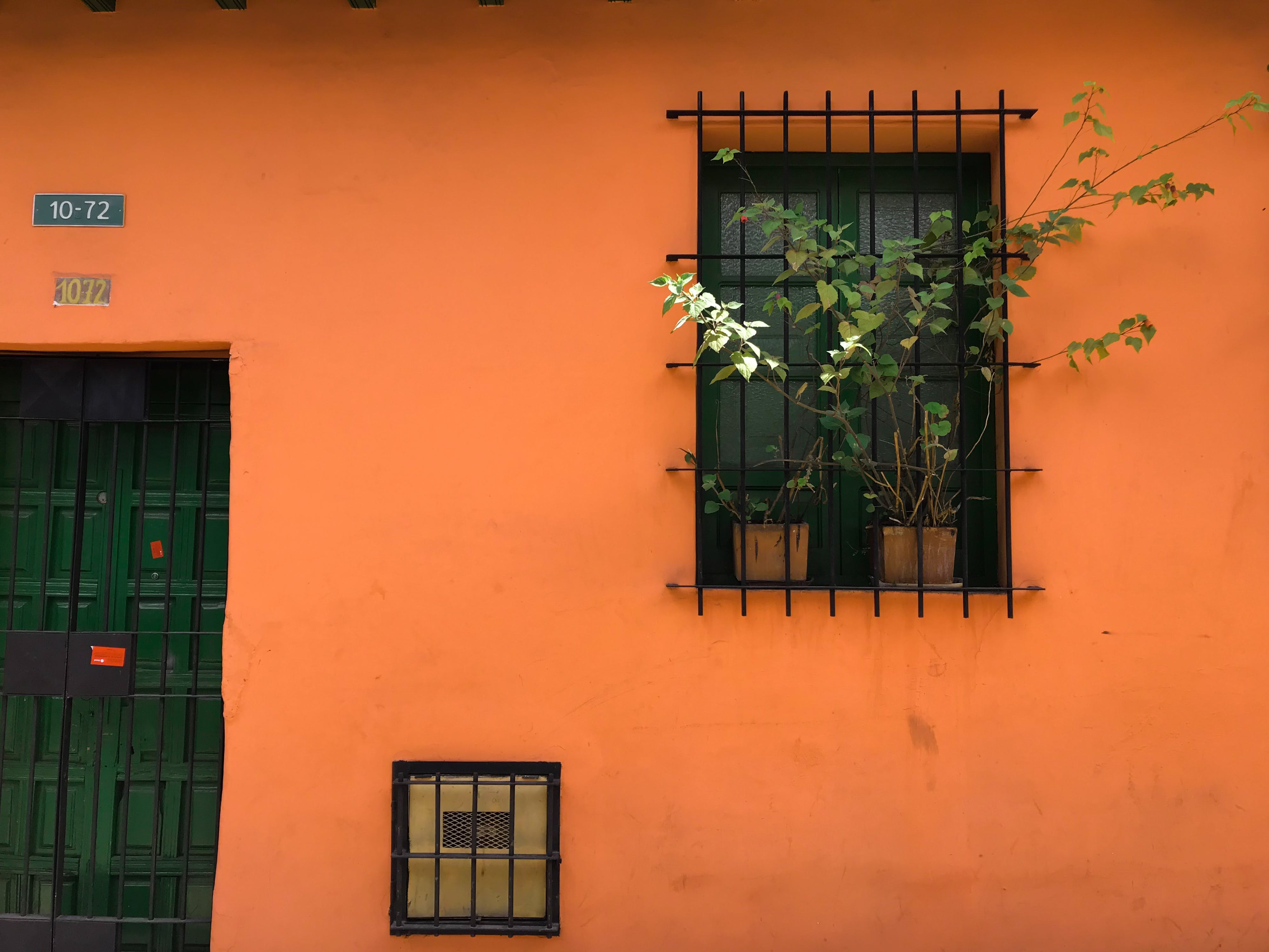 Black Steel Window Bars With Green Plants
