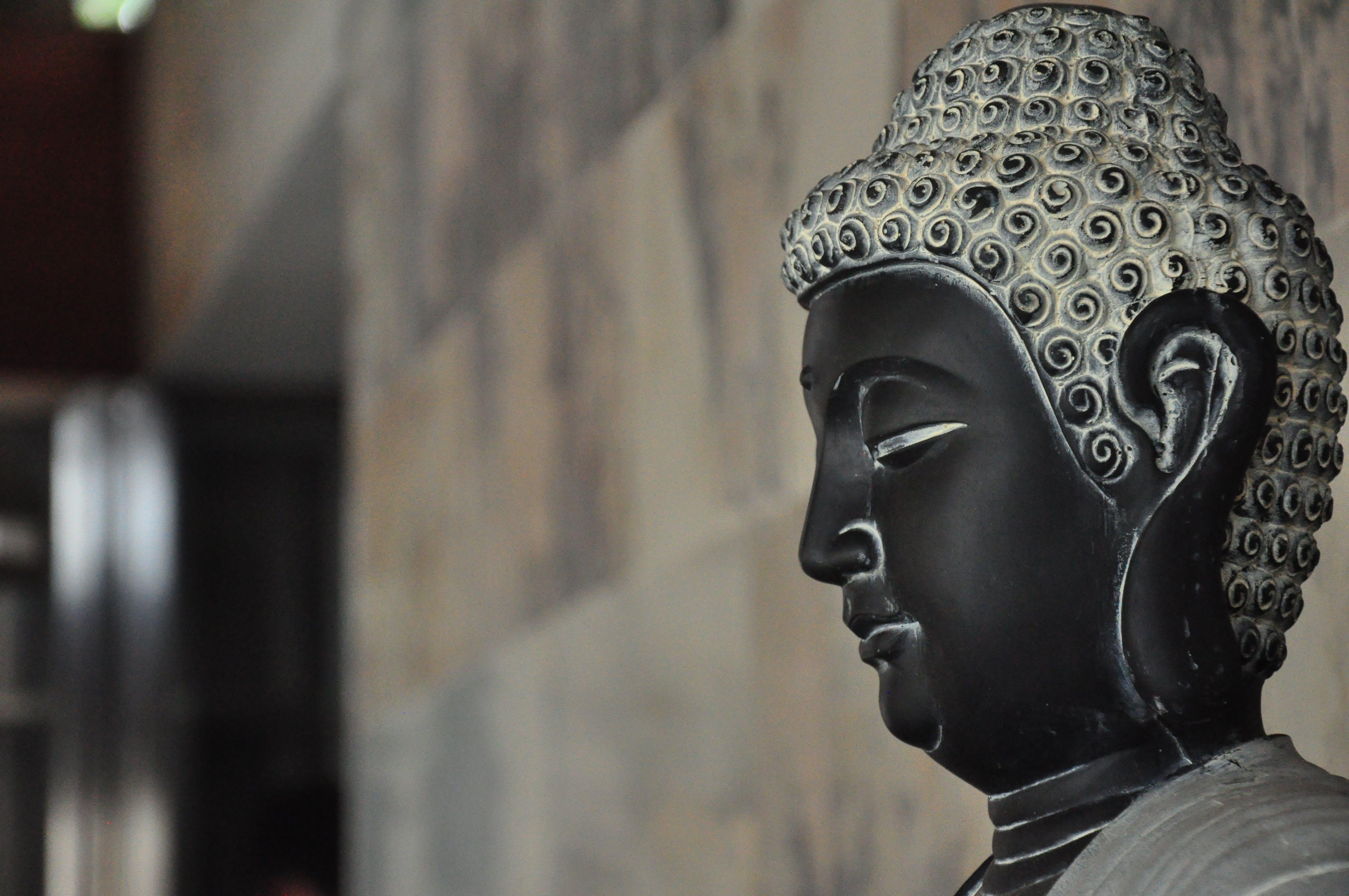 Základová fotografie zdarma na téma buddhismus, náboženství, socha