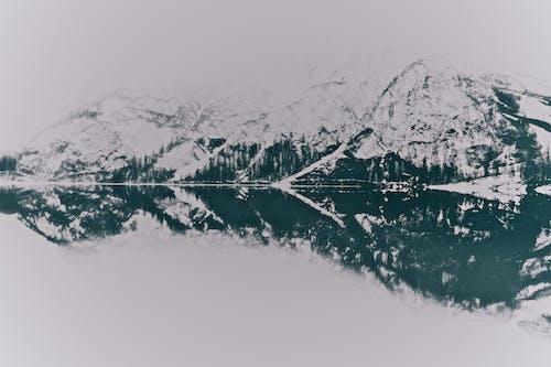 Gratis stockfoto met bergen, bergtop, bevroren, bomen
