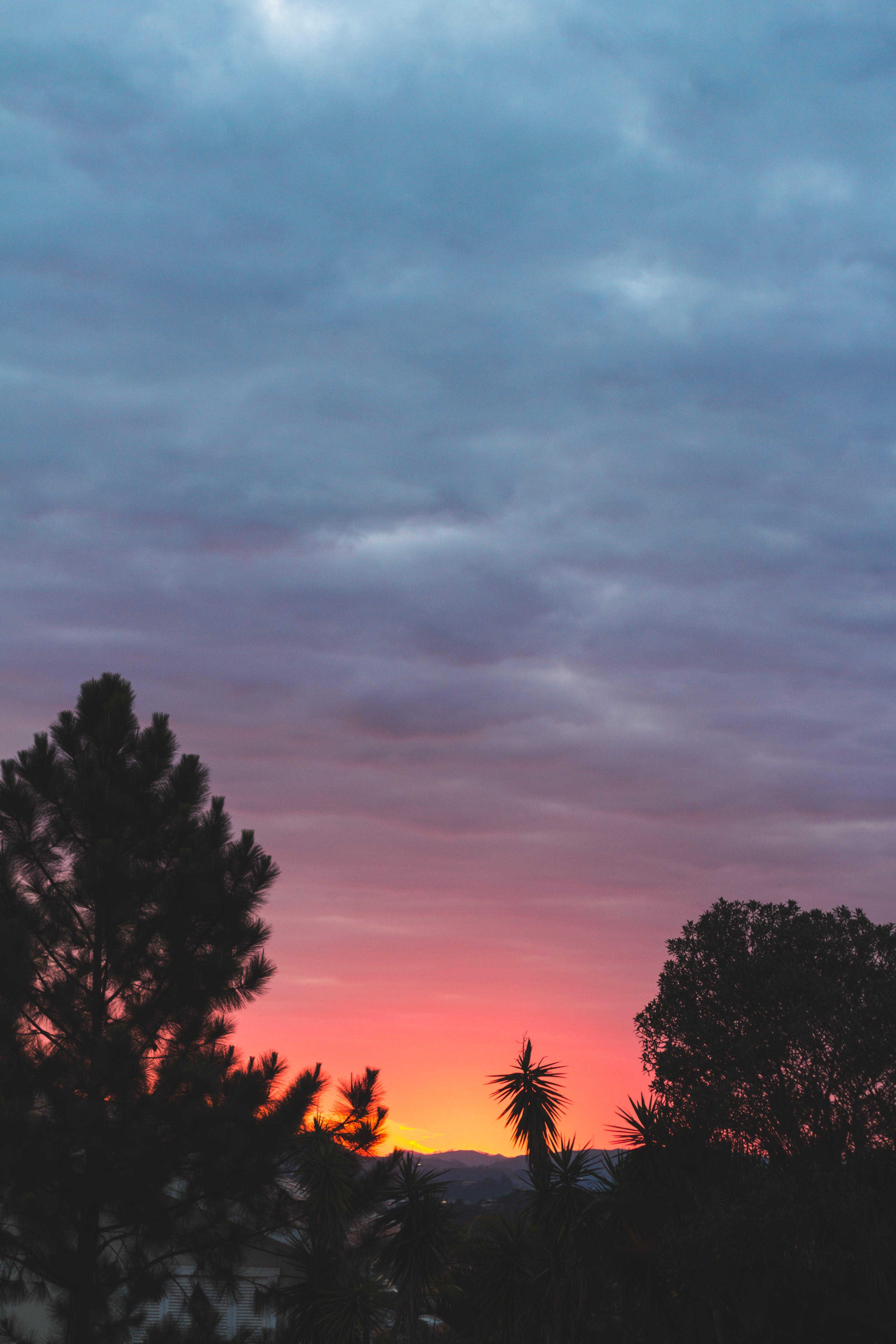 Free stock photo of sky, blue sky, dramatic sky