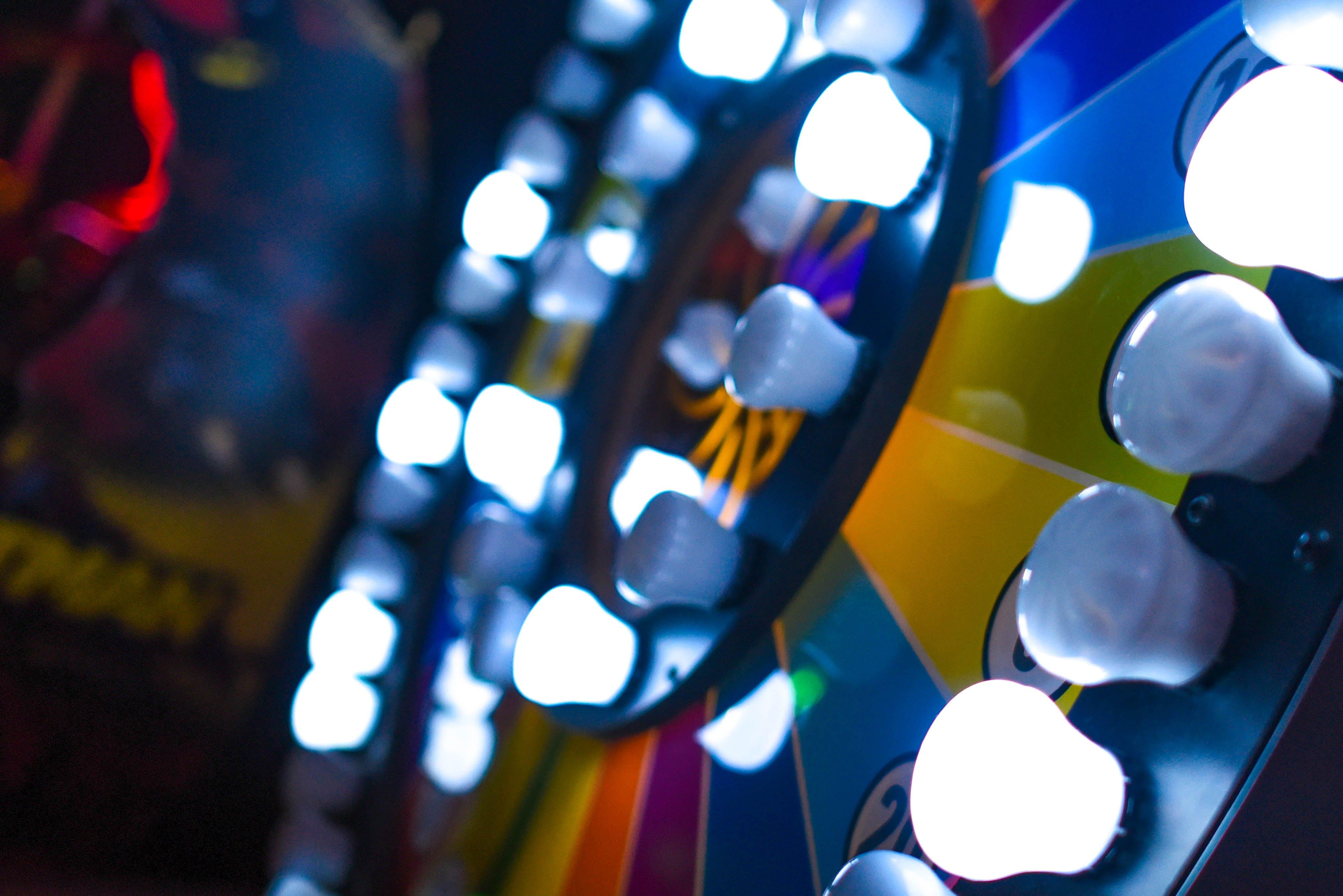 Closeup Photo of Bulbs