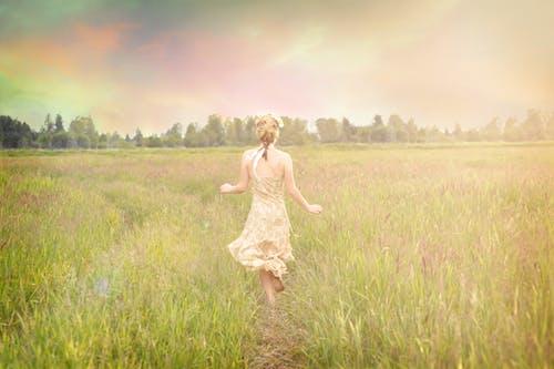 คลังภาพถ่ายฟรี ของ ทุ่งโล่ง, เด็กสาว, แต่งตัว flowy